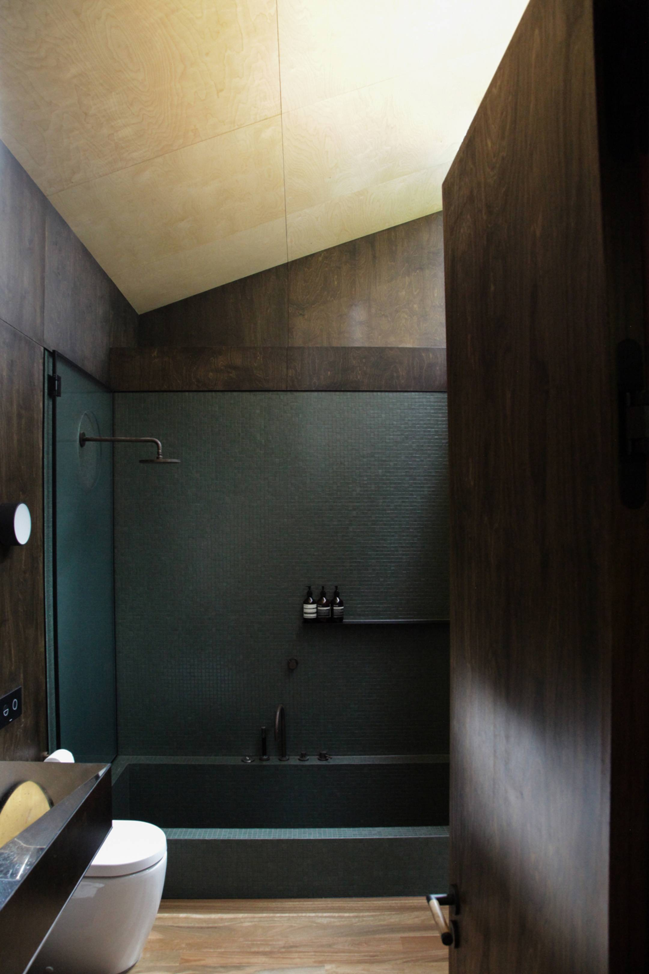 light for bathroom kawakawa house piha herbst architects 13455
